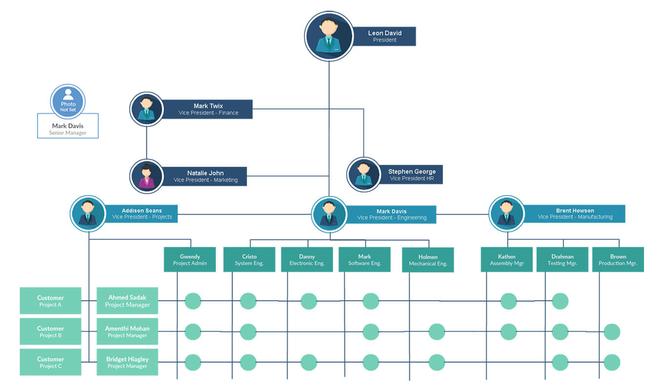 Org Chart Software to Create Organization Charts Online | Creately